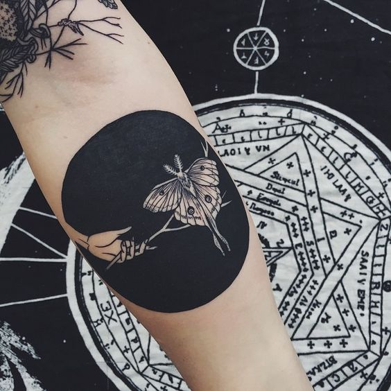 Butterfly Connection